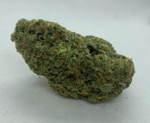 Girl Scout Platinum Cookies - Buy Weed Online with Canada's #1 Cannabis Dispensary - budninjaexpress.com