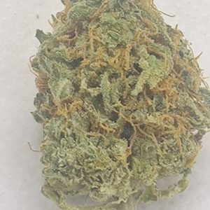 Mango Haze SALE $200/OZ